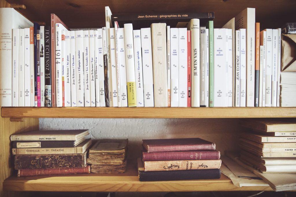 Rayons de livres dans la librairie Le Petit Prince à Morges